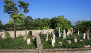 A zsidó temető távlati képe Fotó: Marton Rita